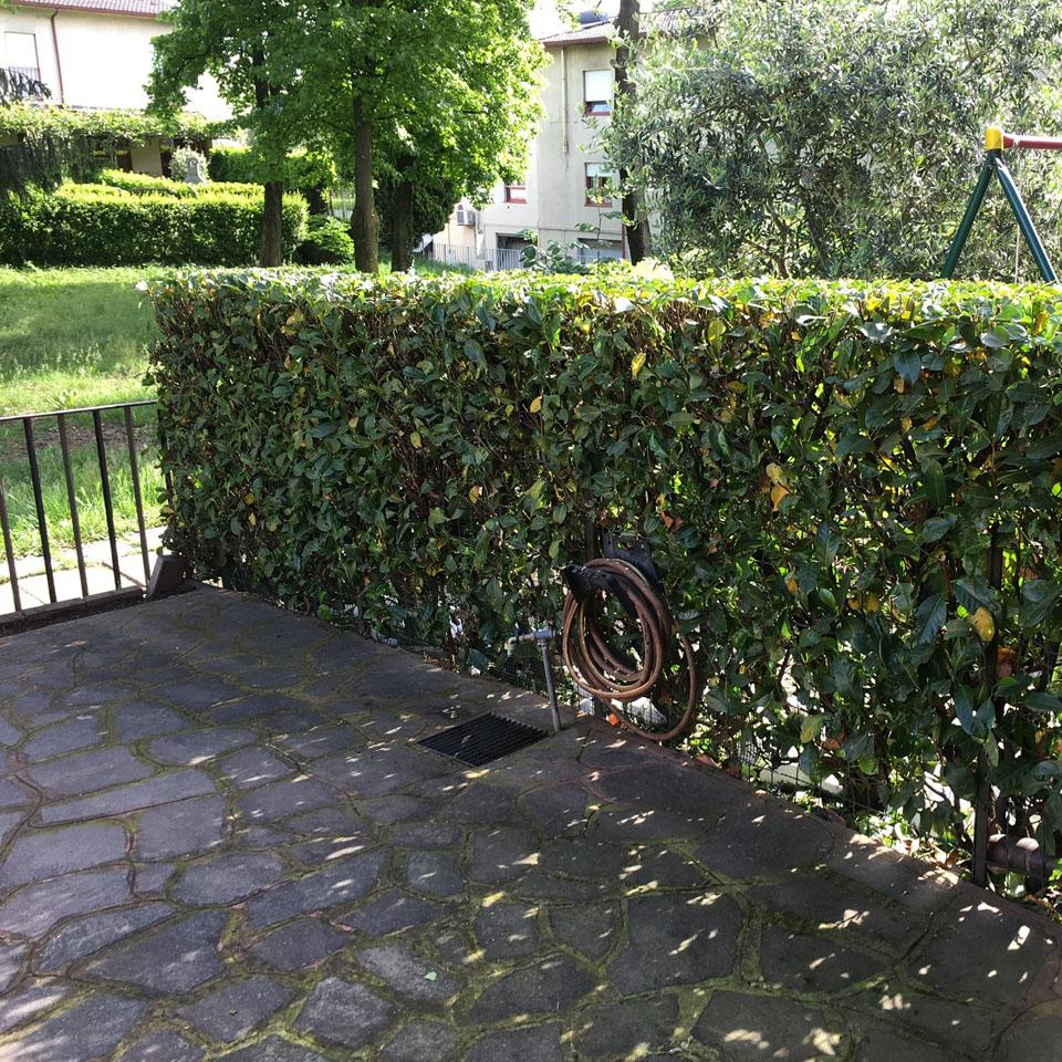 Manutenzione Giardini Milano E Provincia manutenzione ordinaria milano | giardinieri anticrisi